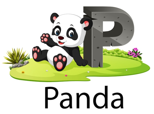 Alphabet zoo animal p pour panda avec l'animal mignon