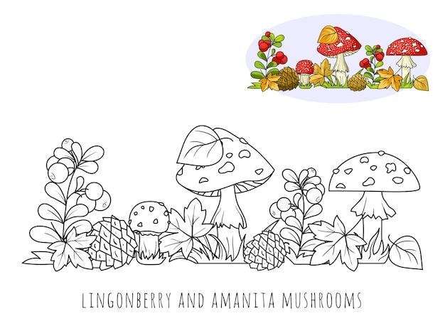 Amanite mouche et airelle rouge, une image à colorier avec un échantillon de couleur.