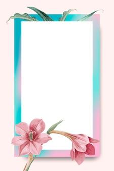 Amaryllis rose sur cadre rose et bleu