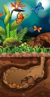 Aménagement paysager avec des vies souterraines et des papillons