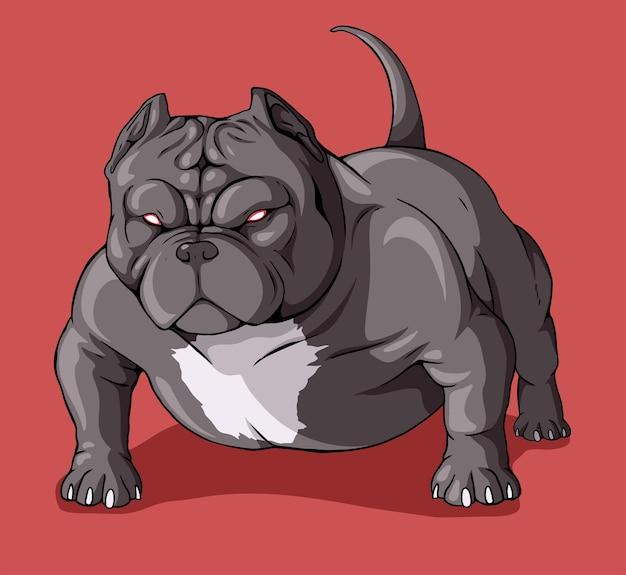 American bully pitbull ojos rojos