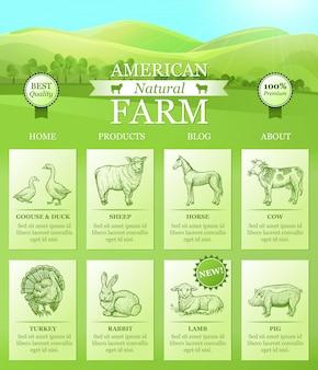 American farm atterrissant pour site web
