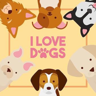 Amour chiens affiche race différente animal domestique