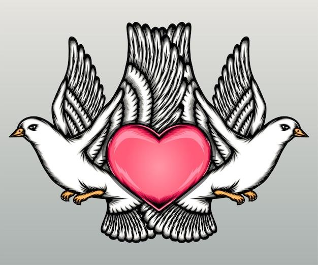 Amour pigeon couple avec coeur isolé sur fond gris