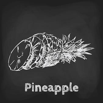 Ananas croquis illustration élément d'utilisation de conception dessinés à la main