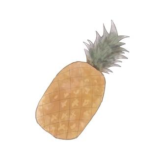 Ananas. sur un fond blanc.
