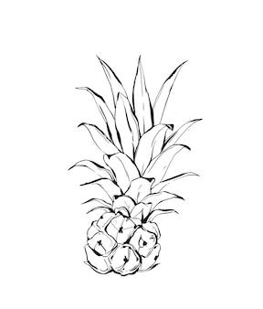 Ananas tropical dessiné à la main
