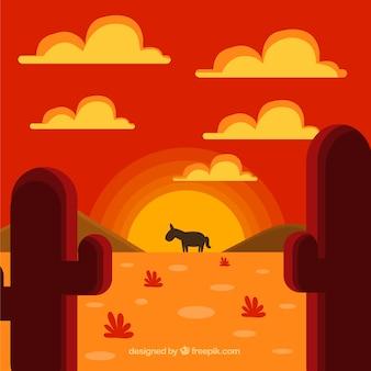 Âne dans le désert, coucher de soleil