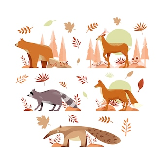 Animal d'automne