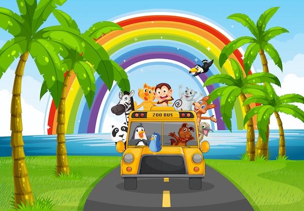 Animal et bus