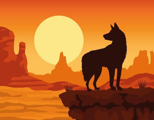 Animal de compagnie chien mignon dans la scène du coucher du soleil du désert