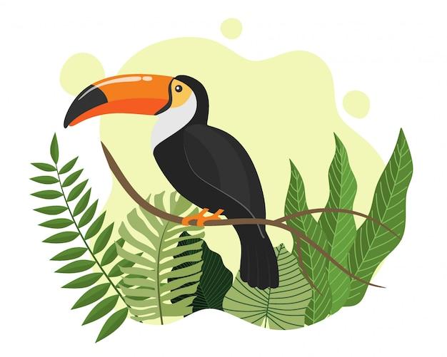 Animal de dessin animé toucan oiseau tropical