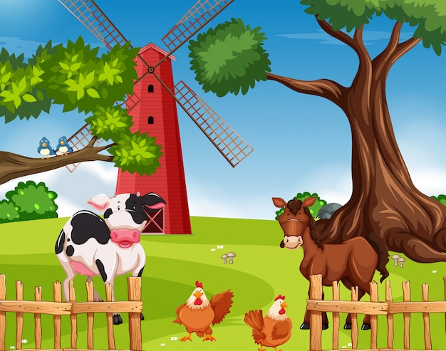 Animal de ferme dans les terres agricoles