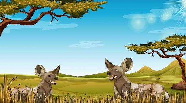 Animal en illustration de la scène africaine
