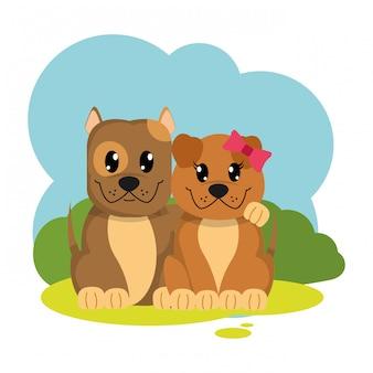 Animal mignon couple chien coloré dans le paysage