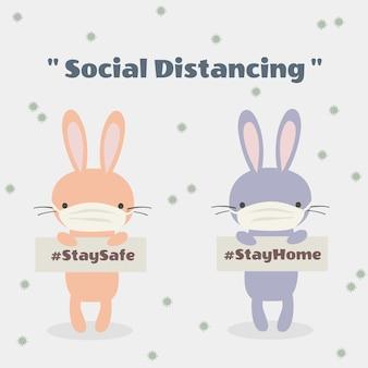 Animal mignon en distanciation sociale