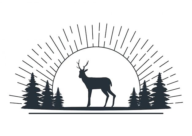 Animal de renne sauvage dans la scène du camp