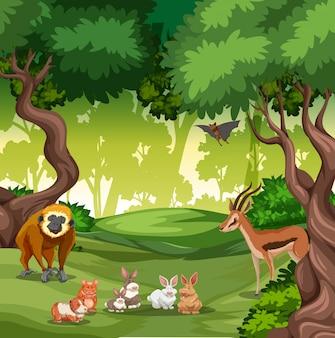 Animal sauvage en forêt