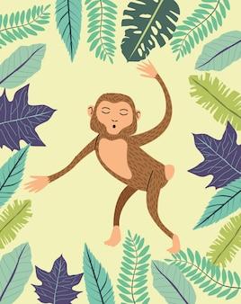 Animal singe sauvage dans la jungle
