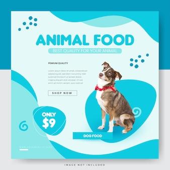 Animalerie et accessoires pour modèle de bannière carrée instagram