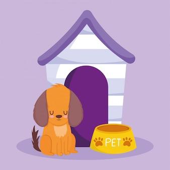 Animalerie, chien assis avec bol et dessin animé animal domestique