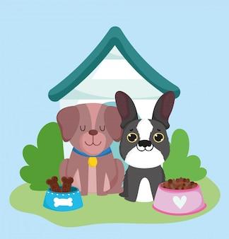 Animalerie, chiens maison de race différente et dessin animé domestique animal alimentaire
