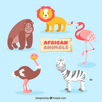 Animaux africains de nice