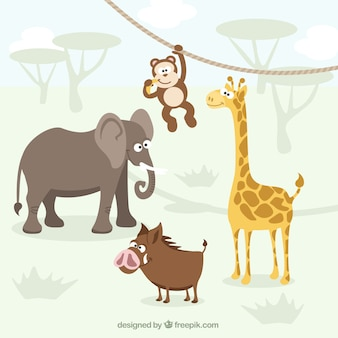 Animaux africains