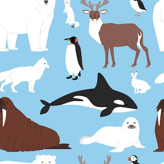 Animaux de l'arctique dessin animé ours polaire ou collection de personnages de pingouins avec renne de baleine et phoque en antarctique d'hiver neigeux mis en arrière-plan transparent