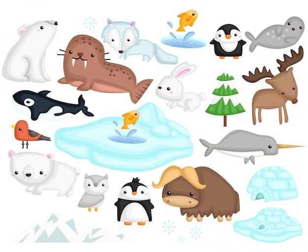 Animaux arctiques