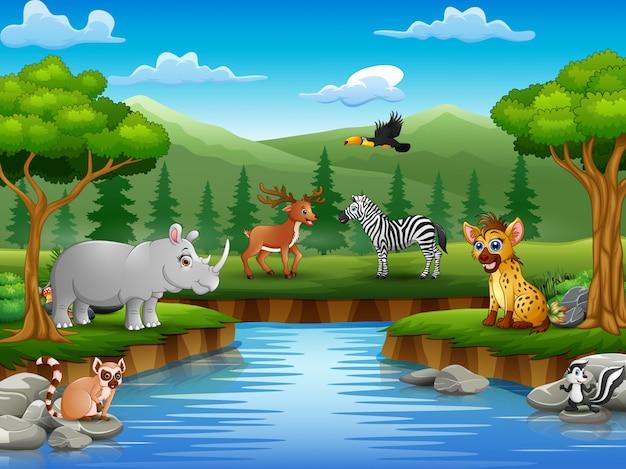 Animaux de bande dessinée profitent de la nature au bord de la rivière