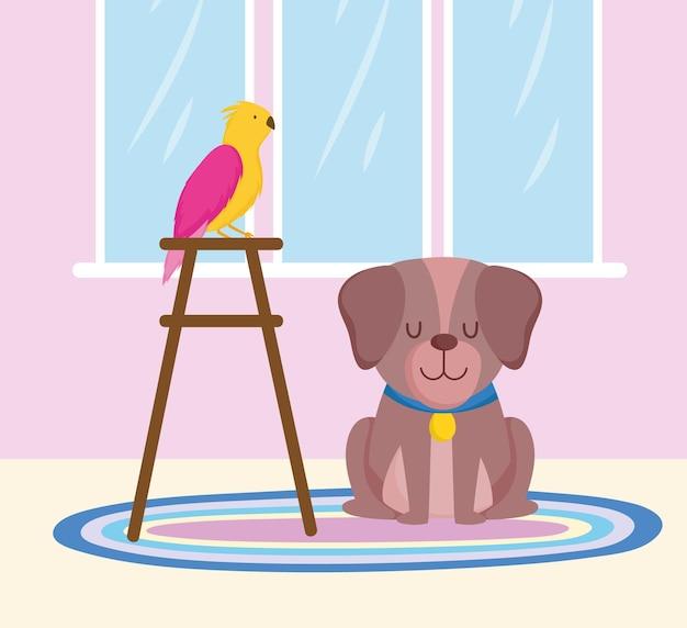Animaux de compagnie chien et perroquet sur illustration vectorielle de chaise dessin animé