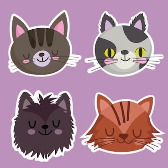 Animaux de compagnie icons set chats félins mascotte animal, visages animaux illustration de dessin animé