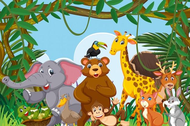 Animaux dans la scène de la jungle