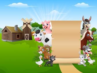 Animaux de la ferme avec un papier blanc