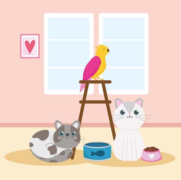 Animaux domestiques chats perroquet nourriture poisson en conserve animaux domestiques vector illustration