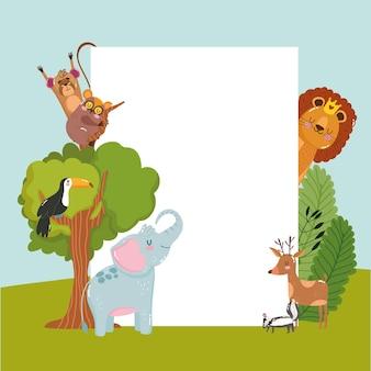 Animaux faune nature dessin animé
