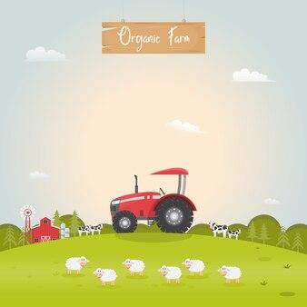 Animaux de la ferme laitière.