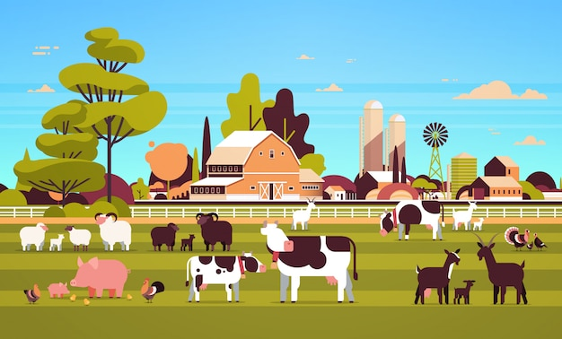 Animaux de ferme pâturage vache chèvre cochon dinde mouton poulet différent animaux domestiques élevage agriculture terres agricoles grange campagne paysage
