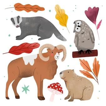 Animaux de la forêt d'automne dessinés à la main