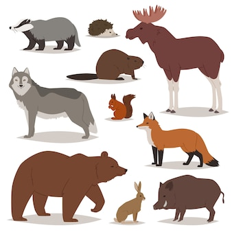 Les animaux de la forêt dessin animé des personnages animaliers portent le renard et le loup sauvage ou le sanglier en illustration boisée ensemble de hérisson wapiti et écureuil isolé sur fond blanc