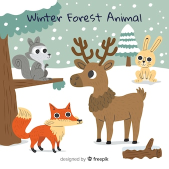 Animaux de la forêt d'hiver