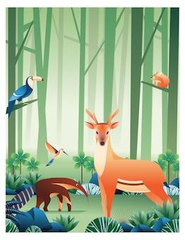 Animaux en forêt