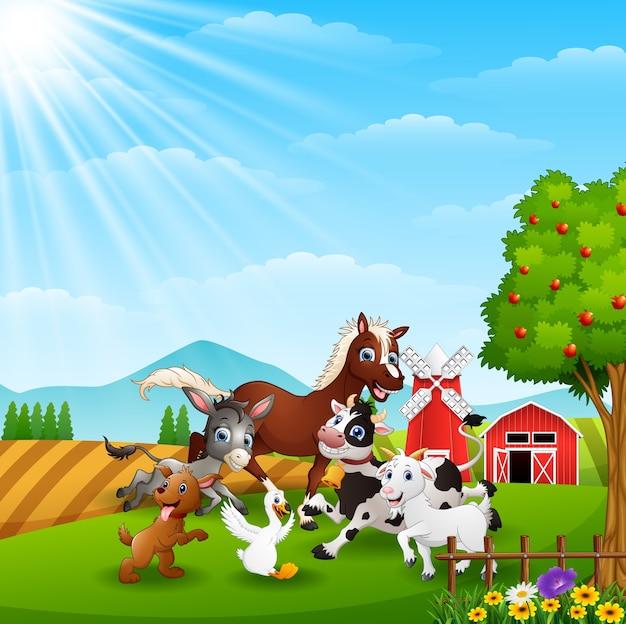 Animaux heureux au fond de la ferme à la lumière du jour