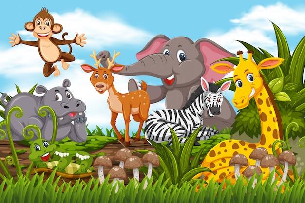 Animaux heureux dans la scène de la jungle