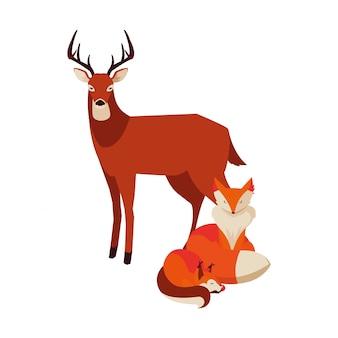 Animaux mammifères renards et cerfs