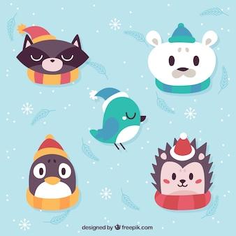 Animaux mignons avec des accessoires d'hiver
