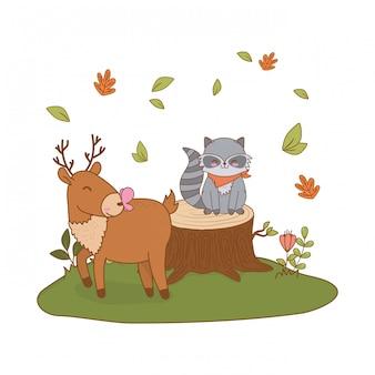 Animaux mignons dans le champ des personnages forestiers