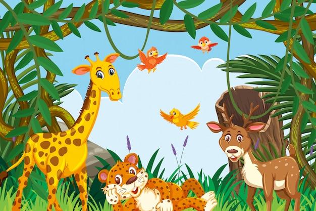 Animaux mignons dans la scène de la jungle