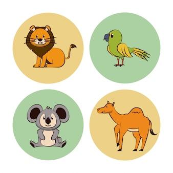 Animaux mignons dessin animé icônes rondes